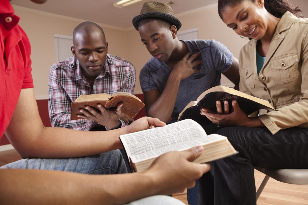 bible study for adults